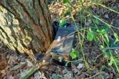 Ræven fundet