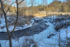 vinter-i-hansted-skov